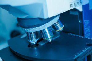 Расшифровка результатов гистологии при раке молочной железы
